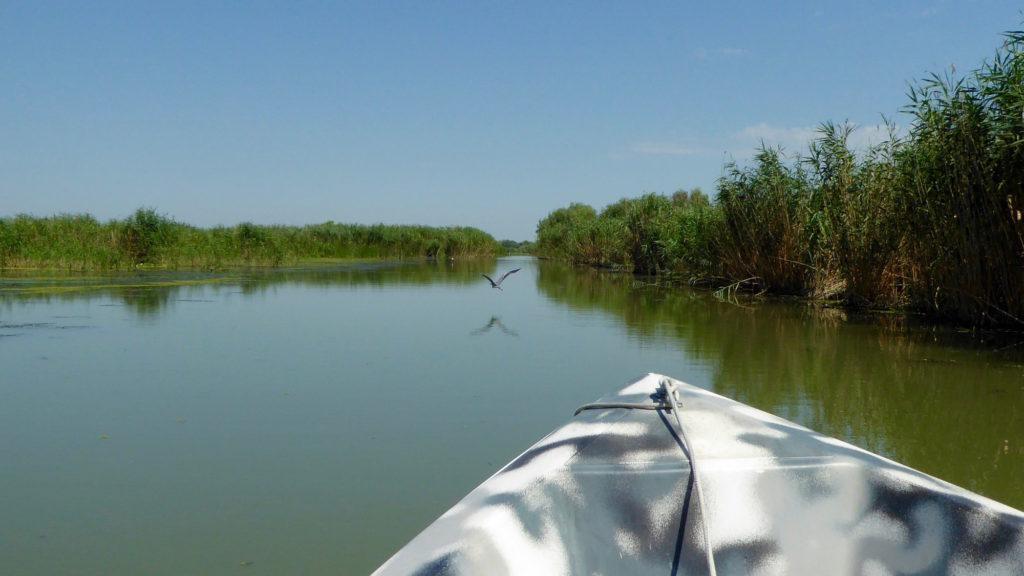 Perspektive mit Boot