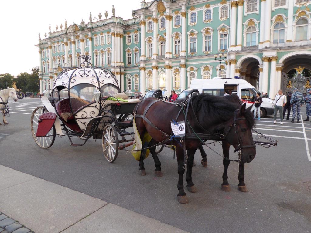 Pferde vor Winterpalast