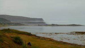 Herbstlicher Fjord mit Nebel