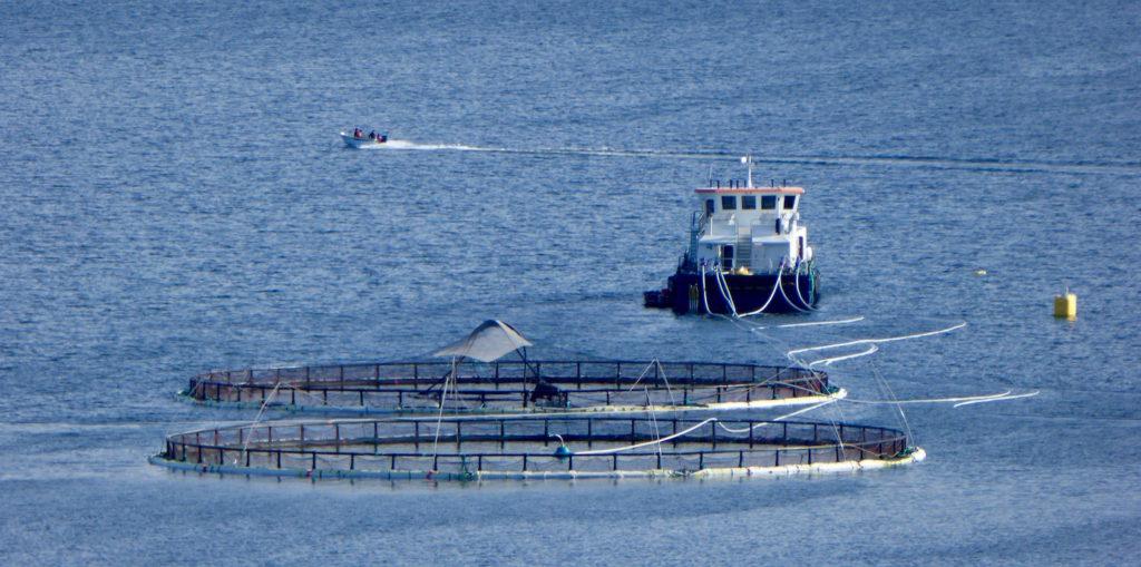 Fischerboot mit Aquakultur