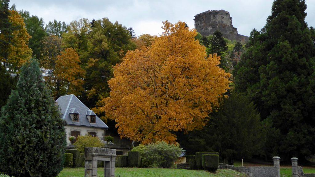 Herbstlaub unterhalb Burg Murol