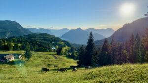 Ibergeregg, Aussicht